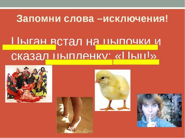 Запомни слова –исключения! Цыган встал на цыпочки и сказал цыпленку: «Цыц!»