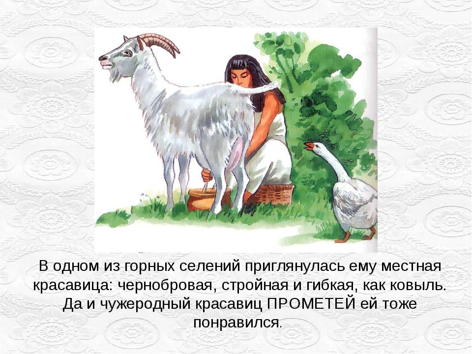 В одном из горных селений приглянулась ему местная красавица: чернобровая, ст...