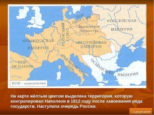 На карте жёлтым цветом выделена территория, которую контролировал Наполеон в