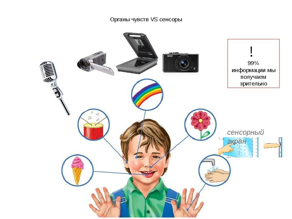 Органы чувств VS сенсоры ! 99% информации мы получаем зрительно сенсорный экран