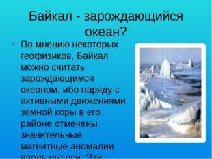 Байкал - зарождающийся океан? По мнению некоторых геофизиков, Байкал можно сч