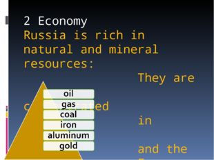 2 Economy Russia is rich in natural and mineral resources: They are concentra