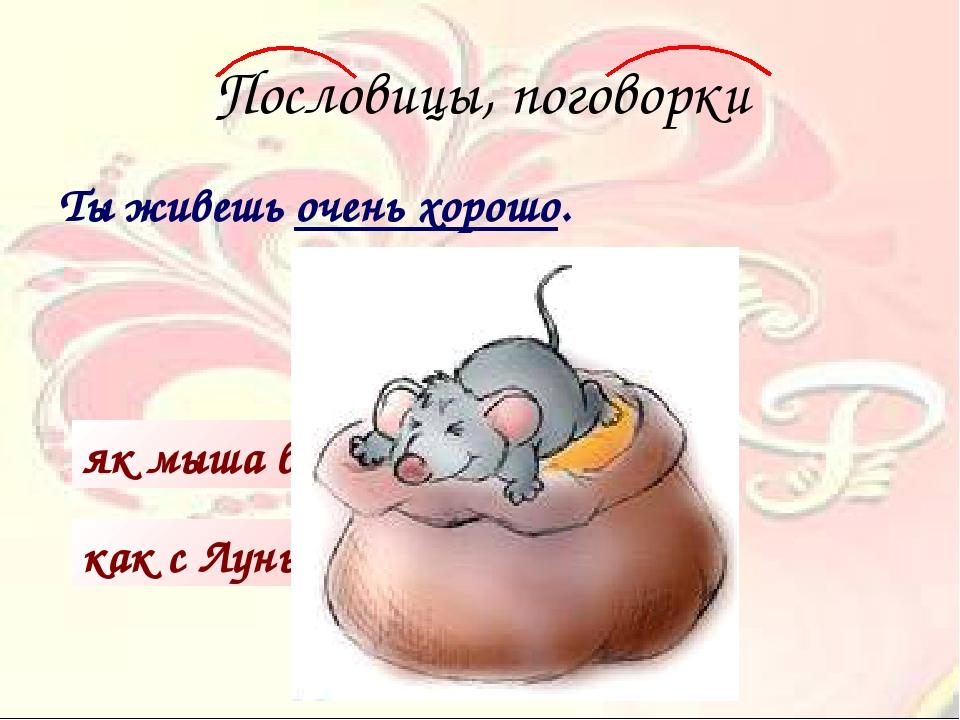 Пословицы, поговорки Ты живешь очень хорошо. как с Луны свалился як мыша в кр...