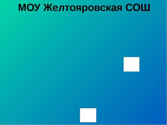 МОУ Желтояровская СОШ