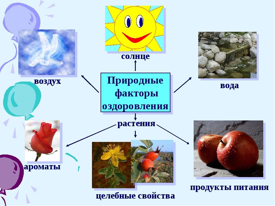 Природные факторы оздоровления растения воздух ароматы солнце вода целебные...