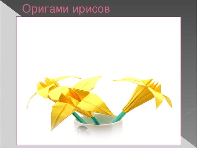 Оригами ирисов