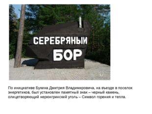 По инициативе Букина Дмитрия Владимировича, на въезде в поселок энергетиков,