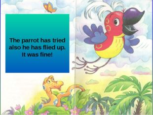 The parrot has tried also he has flied up. It was fine!