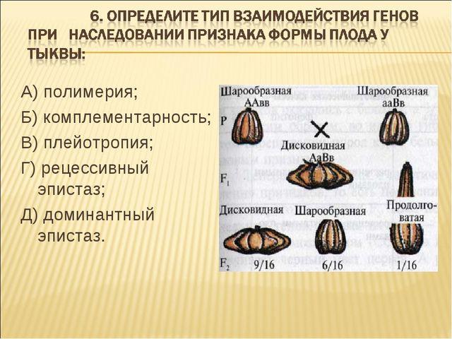 А) полимерия; Б) комплементарность; В) плейотропия; Г) рецессивный эпистаз; Д...