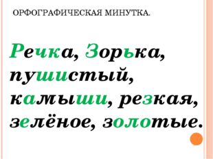 ОРФОГРАФИЧЕСКАЯ МИНУТКА. Речка, Зорька, пушистый, камыши, резкая, зелёное, зо