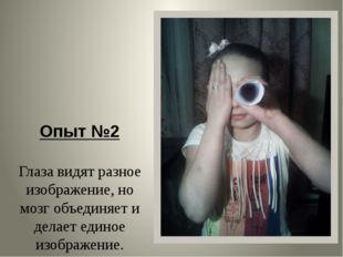 Опыт №2 Глаза видят разное изображение, но мозг объединяет и делает единое и