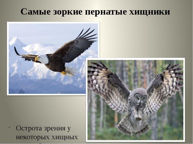 Самые зоркие пернатые хищники Острота зрения у некоторых хищных птиц в 8 раз...