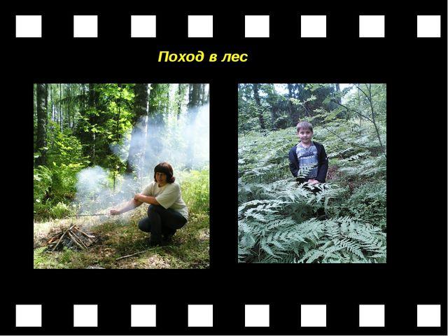 Поход в лес