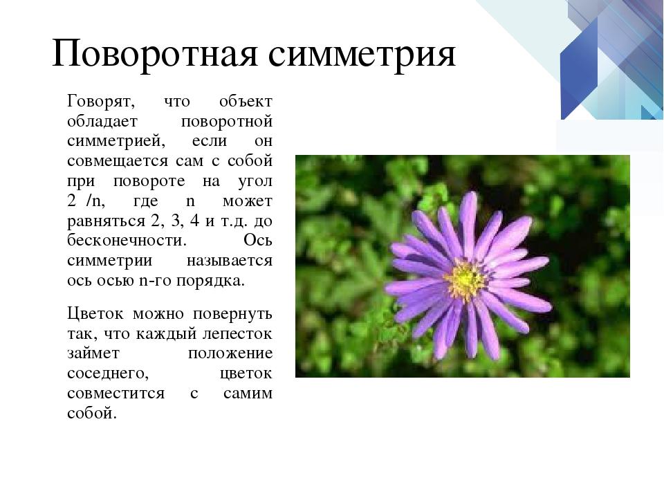 Поворотная симметрия Говорят, что объект обладает поворотной симметрией, если...
