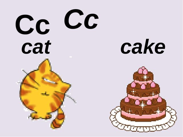 Cc Cc cat cake