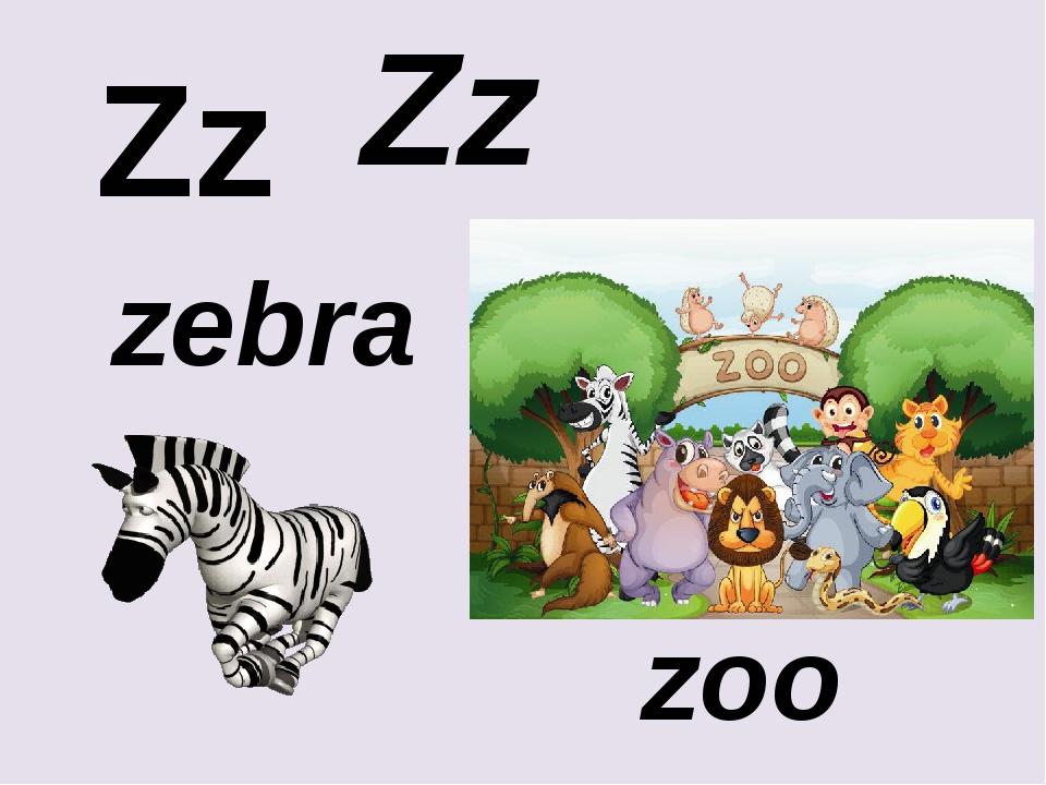 Zz Zz zebra zoo