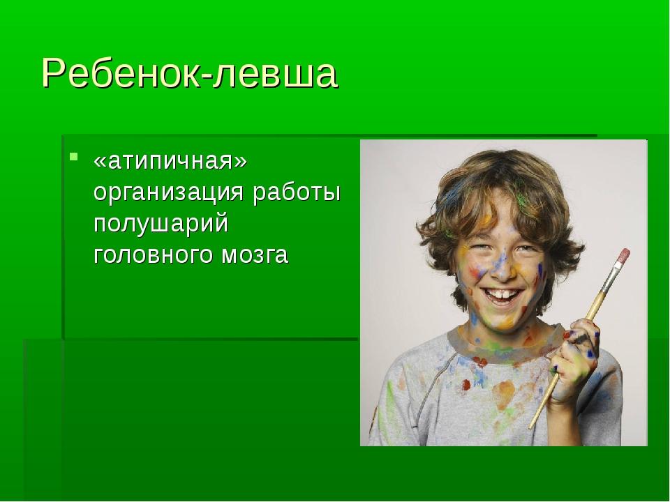 Ребенок-левша «атипичная» организация работы полушарий головного мозга