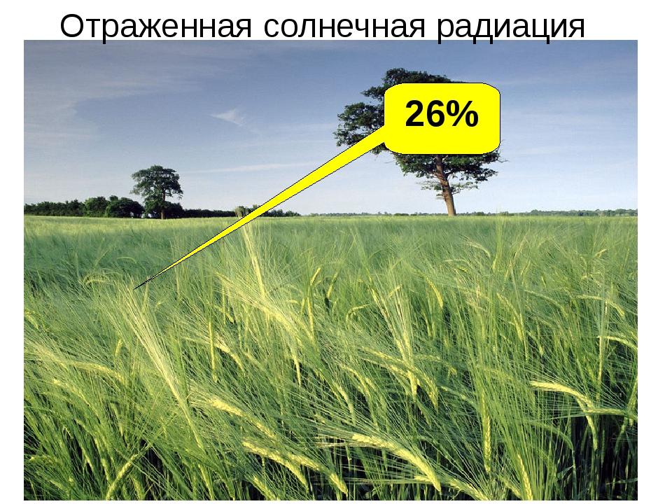 26% Отраженная солнечная радиация