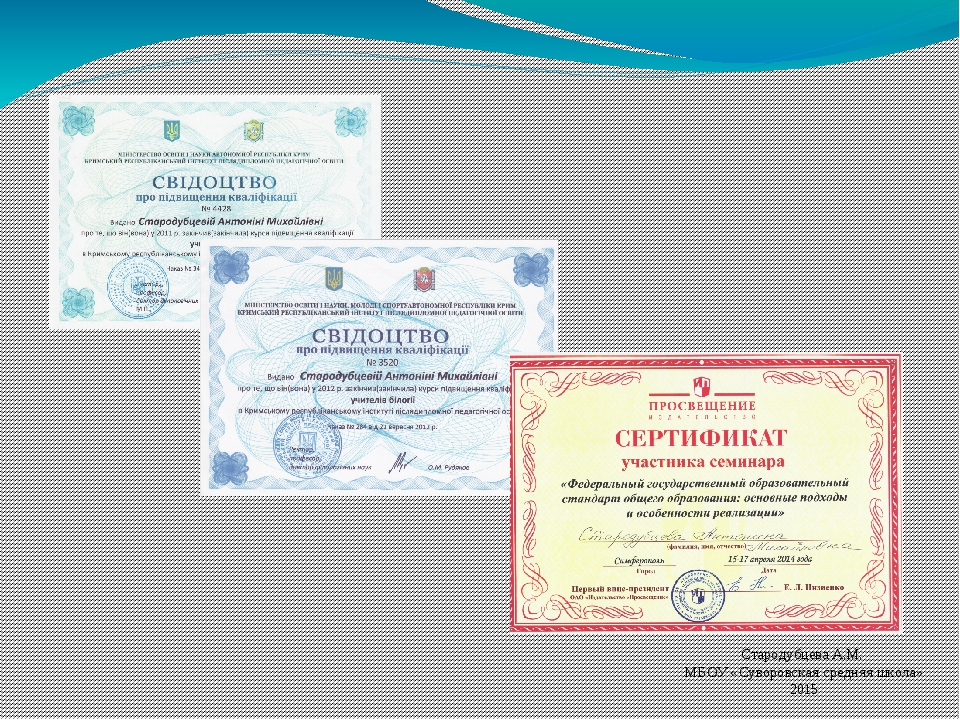 Стародубцева А.М. МБОУ «Суворовская средняя школа» 2015