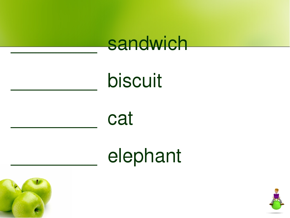________ sandwich ________ biscuit ________ cat ________ elephant