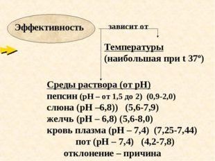 зависит от Температуры (наибольшая при t 37º) Среды раствора (от рН) пепсин