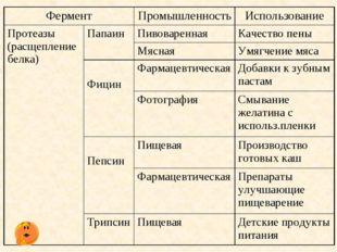 ФерментПромышленностьИспользование Протеазы (расщепление белка)ПапаинПив