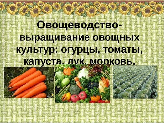 Овощеводство- выращивание овощных культур: огурцы, томаты, капуста, лук, морк...