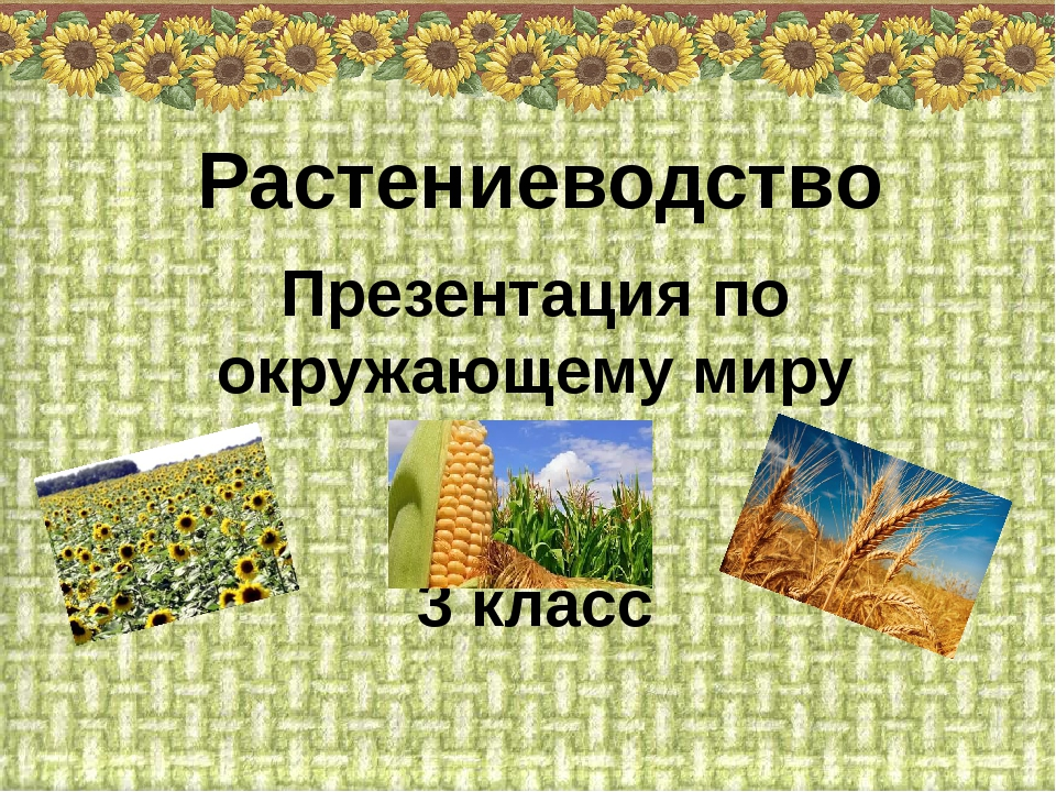 Презентация по окружающему миру 3 класс Растениеводство