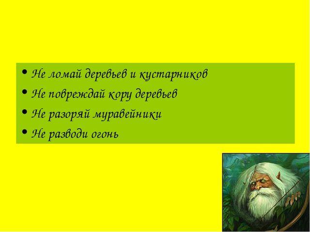 Леший: «Человек, веди себя в лесу аккуратно!» Не ломай деревьев и кустарников...