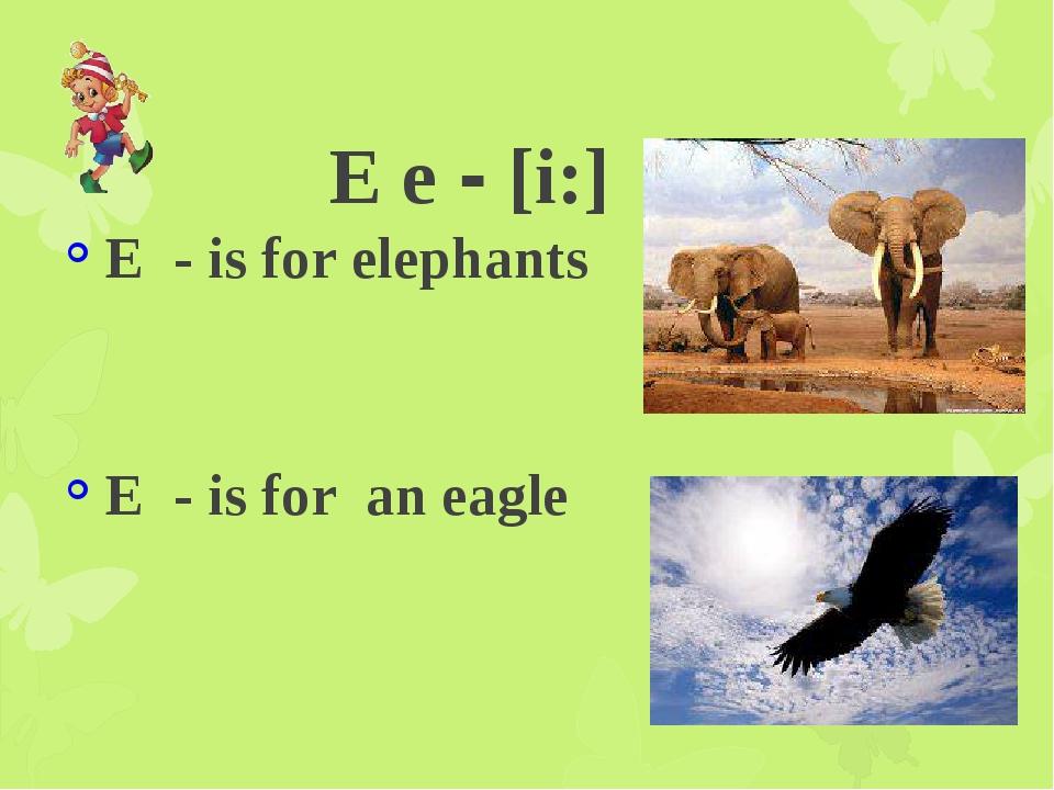 E e - [i:] E - is for elephants E - is for an eagle