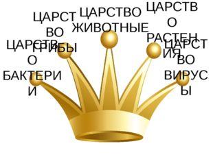 ЦАРСТВО БАКТЕРИИ ЦАРСТВО ГРИБЫ ЦАРСТВО РАСТЕНИЯ ЦАРСТВО ЖИВОТНЫЕ ЦАРСТВО ВИРУСЫ
