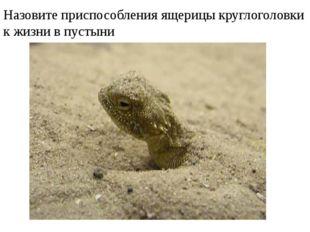 Назовите приспособления ящерицы круглоголовки к жизни в пустыни