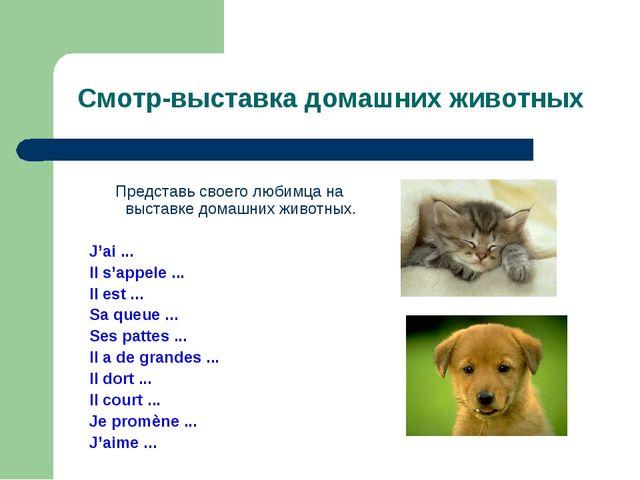 Смотр-выставка домашних животных Представь своего любимца на выставке домашни...