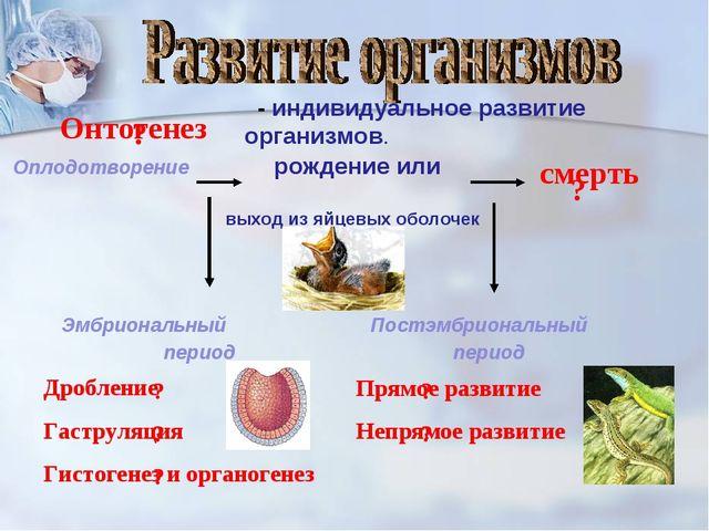- индивидуальное развитие организмов. Оплодотворение рождение или выход из я...