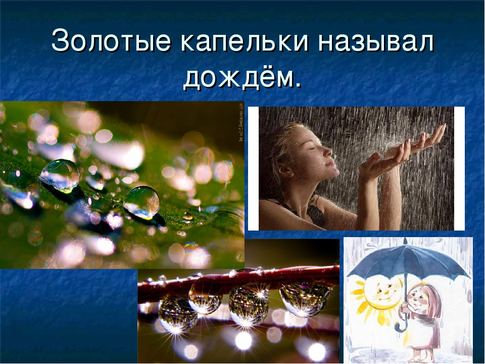 Золотые капельки называл дождём.